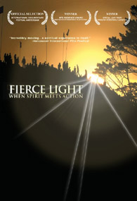Fierce Light